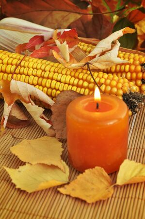 Autumn still life with corncobs, leaves, and burning candle photo