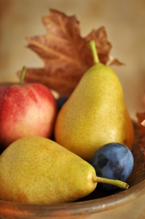 Ripe yellow pears, plum and red apple in a clay bowl Stock Photo