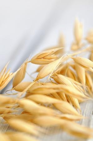 Ripe oat on a wooden table Standard-Bild