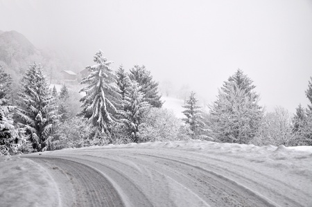 Road into the snowy foggy winter
