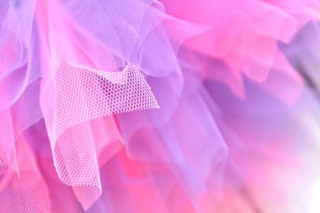 Pink and lavender tutu in full frame