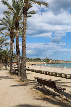 棕榈树在塔拉贡纳在地中海比赛期间在2018年6月。照片在2018年6月在塔拉贡纳的地中海游戏期间采取了照片