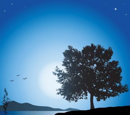 야간 풍경 일러스트