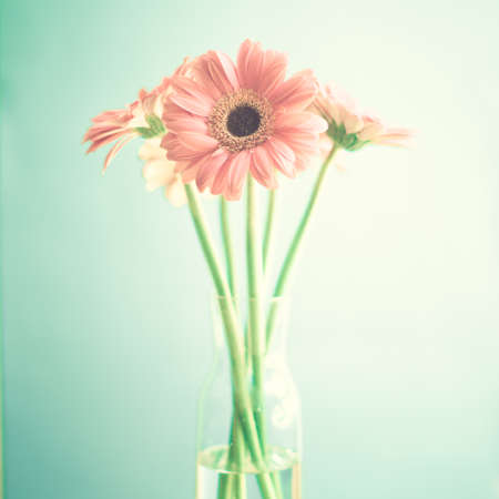 uneven: Vintage pink flowers