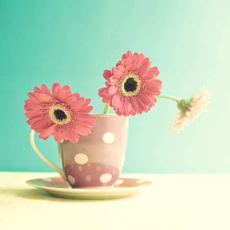 Pink flowers on a polka dots vase photo