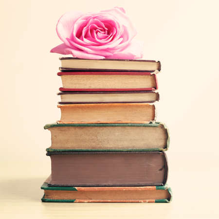 bible story: Rose over vintage books