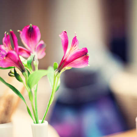 Tiny purple flowers in a vase photo