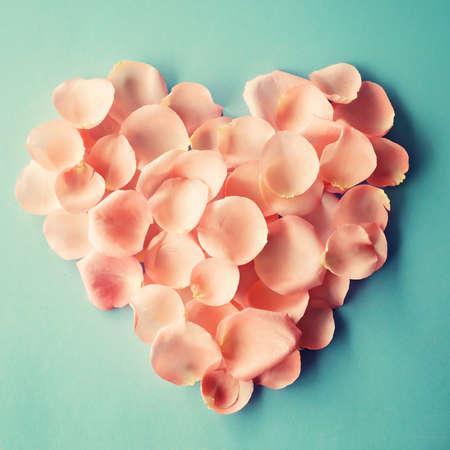 Corazón hecho de pétalos de rosa rosa