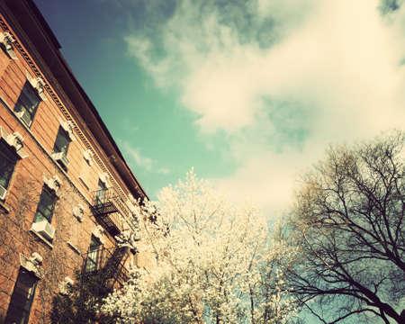 new filter: New York City Spring