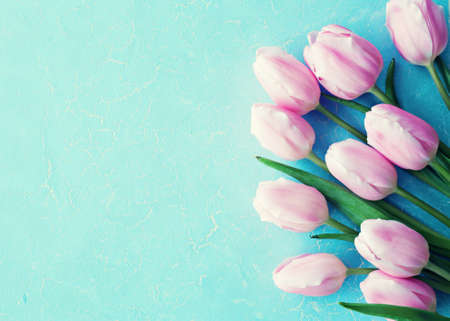 Purple tulips over blue background