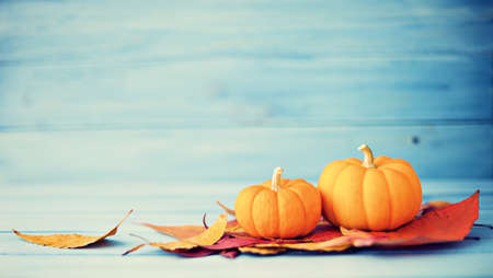 Pumpkins and autumn leafs over turquoise wood Stock Photo
