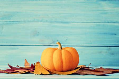 calabaza: Calabaza y hojas de otoño sobre la madera de color turquesa