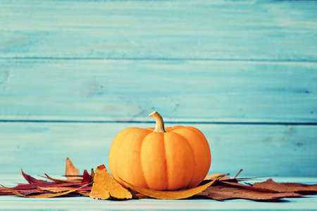 Pumpkin and autumn leafs over turquoise wood