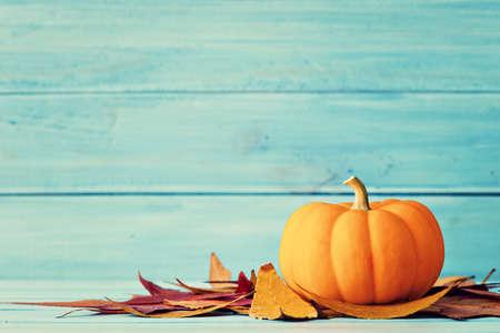 Zucca e foglie d'autunno su legno turchese Archivio Fotografico - 45341716