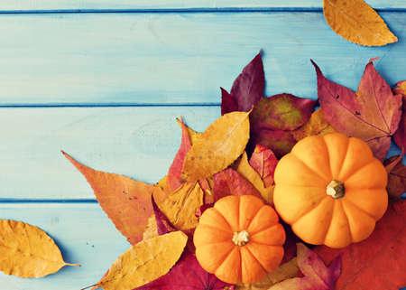 Pompoenen en de herfst doorbladert over turquoise hout Stockfoto