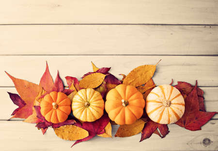 Pumpkins and autumn leafs over pale wood