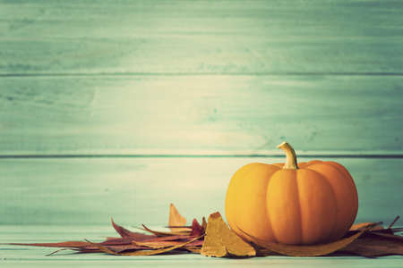 pumpkin patch: Pumpkin and autumn leafs over turquoise wood
