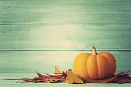 Zucca e foglie d'autunno su legno turchese Archivio Fotografico - 45341897