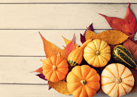 pale wood: Pumpkins and autumn leafs over pale wood