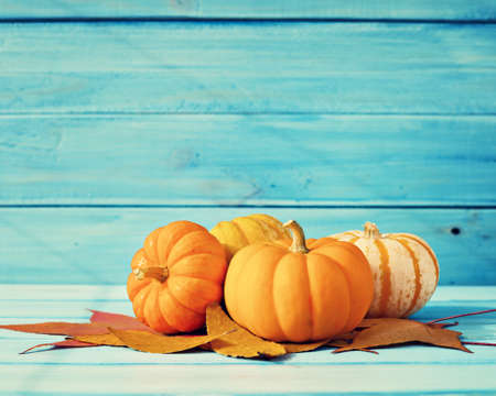 autumn colors: Pumpkins and autumn leafs over turquoise wood Stock Photo