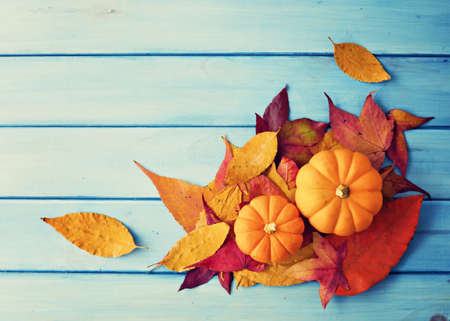 background color: Pumpkins and autumn leafs over turquoise wood Stock Photo