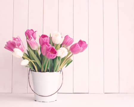 pink flowers: Pink and white tulips in a vintage white tin bucket Stock Photo