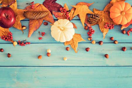 autumn leafs: Pumpkins, apple and hazelnuts over autumn leafs