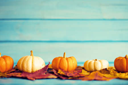 Pumpkins over autumn leafs