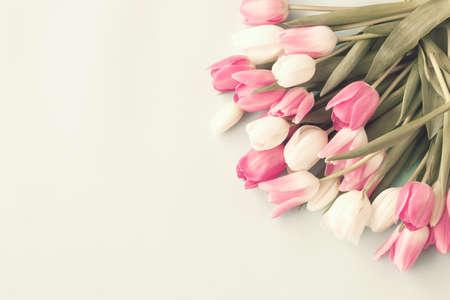 Tulipanes rosados ??y blancos de la vendimia Foto de archivo - 69782283