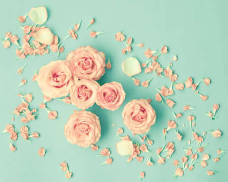 Pink roses over mint background