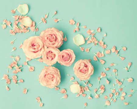 Roze rozen over mint achtergrond Stockfoto - 69721605