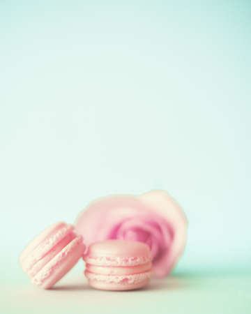 Rose and pink macaroons