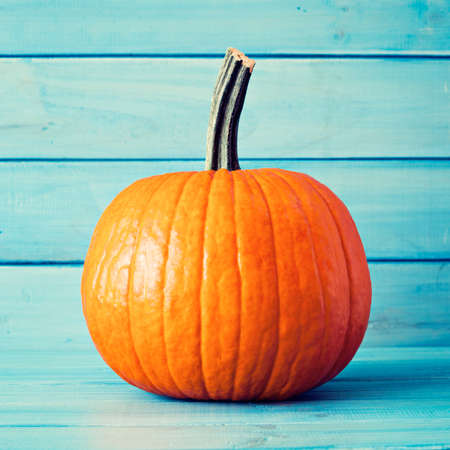Pumpkin over turquoise colored wood