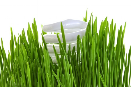 Economical lamp in a grass on white background.
