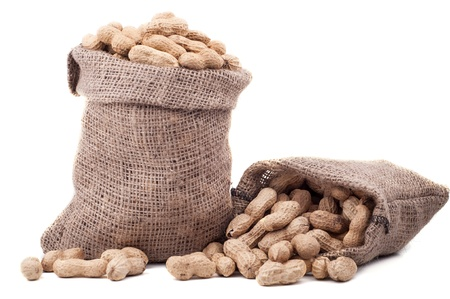 burlap sac: Peanut in a bag on a white background