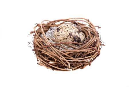 Nest with quail eggs on a white background Imagens