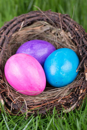 Easter eggs in a nest on a background of green grass Stock Photo - 17894023
