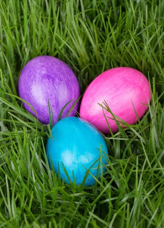 Colored Easter eggs in the green grass photo