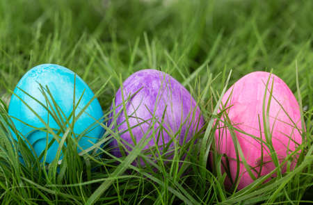 Colored Easter eggs in the green grass Stock Photo - 17894024