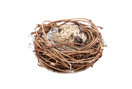 Quail eggs in a nest on white background photo