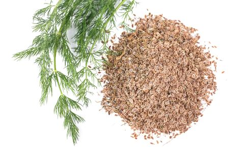 fresh dill and dry on a white background Stock Photo - 18130609