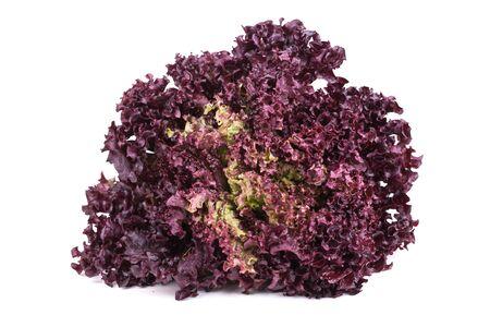 Fresh Lettuce salad on a white background Stock Photo - 18373305