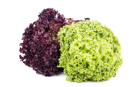 vibrat: Fresh Lettuce salad on a white background