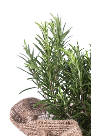 rosemary in bag on a wooden background Stock Photo