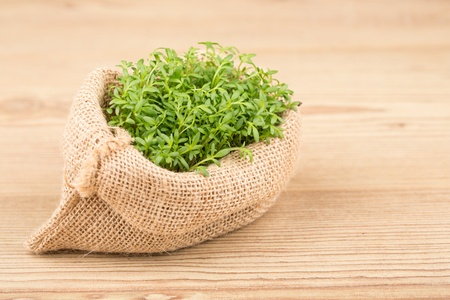 Fresh green watercress on a  wooden backgrounds