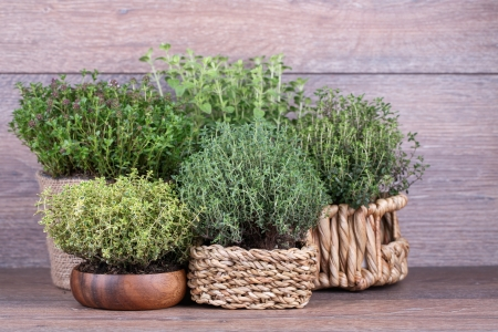 Fresh herbs in basket  on wooden background Stock Photo