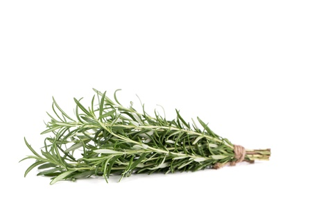 aromatic: Fresh  branch of rosemary on a white background