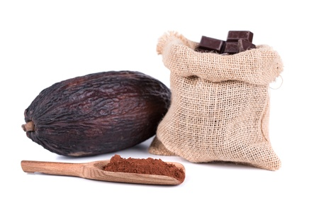 cocoa fruit with chocolate on a white background photo