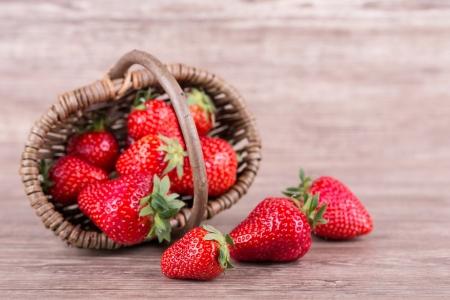chocolate covered strawberries: fresas cubiertas de chocolate sobre un fondo de madera Foto de archivo