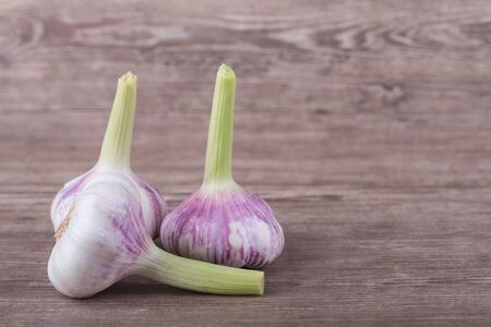 Big brown garlic on a wooden background photo